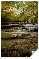 Cascading River in Autumn, Print