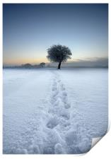 Tracks in the snow, Print