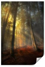 The rays of autumn, Print