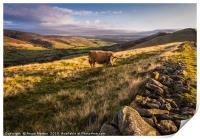 Vale of Edale, Print