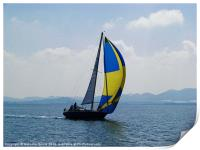 Small Yacht Large Spinnaker, Print