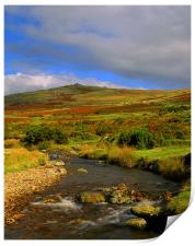 River Lyd Looking Towards Great Links Tor, Print