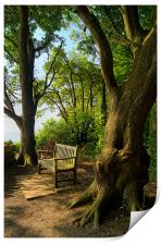 Bench with a View, Durlston Bay near Swanage, Print