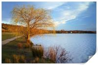 Rother Valley Country Park, Print