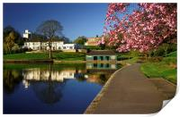 Crookes Valley Park, Print