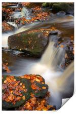 On the Rocks in Padley Gorge , Print