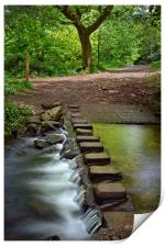 Porter Brook Stepping Stones & Falls              , Print