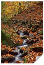 Porter Clough in Autumn                           , Print