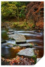 Rivelin Stepping Stones                           , Print