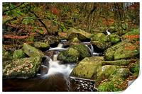 Padley Gorge in Autumn                      , Print