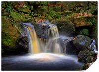 Golden Falls at Padley Gorge                      , Print