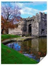 FALLING LEAVES AT BEAUMARIS CASTLE, Print